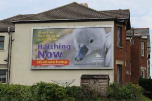 local outdoor advertising