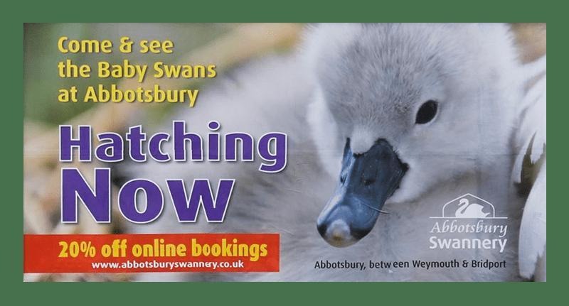 Weymouth advertising